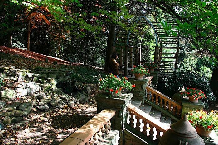 Общественный парк Morris Arboretum, Филадельфия 17426