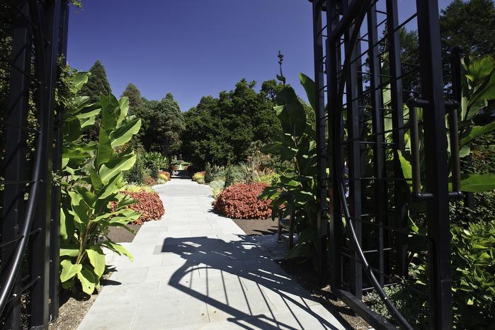 Общественный парк Morris Arboretum, Филадельфия 62749