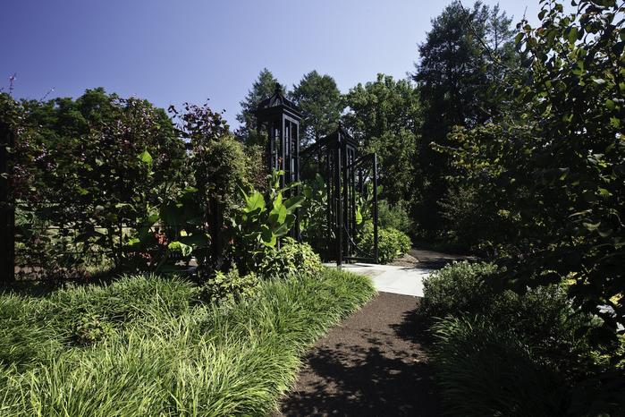 Общественный парк Morris Arboretum, Филадельфия 94772