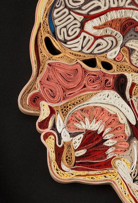 Lisa_Nilsson_paper_anatomy_1 (475x700, 141Kb)