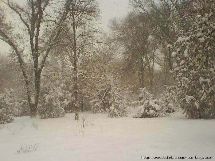 зима, красиво в парке (700x525, 336Kb)