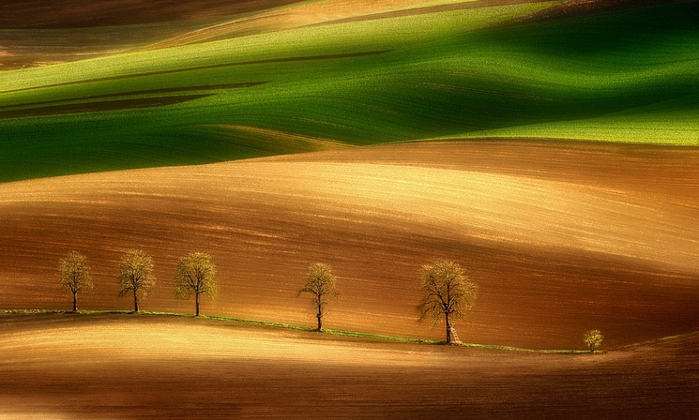Красивые фото, поля, луга, равнины,