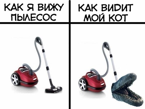 x_4b5db549 (604x453, 50Kb)