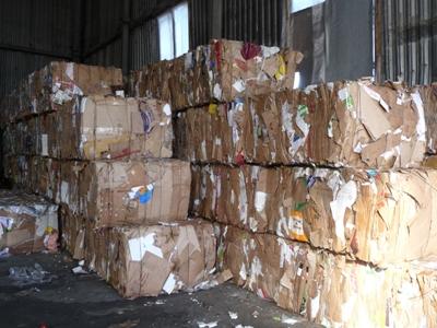 Выбросили бумагу в мусор — спилили еще одно дерево!