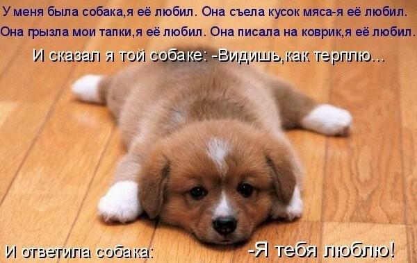 x_987769ca (600x379, 50Kb)