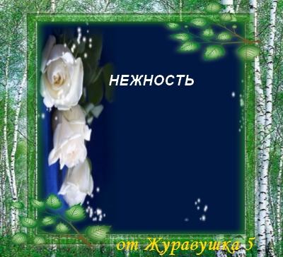 розы нежные белые (400x364, 123Kb)