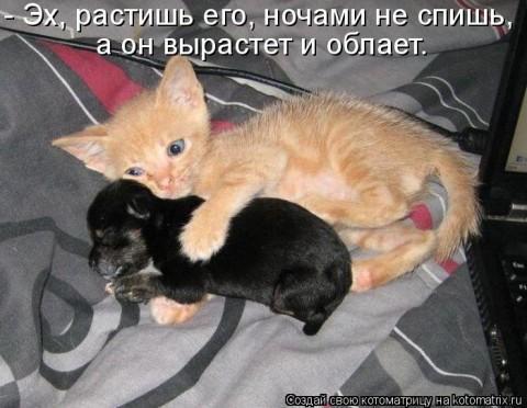 1331494894_201207030143351 (480x372, 31Kb)