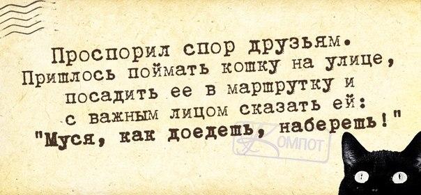 1400814169_frazochki-2 (604x280, 126Kb)