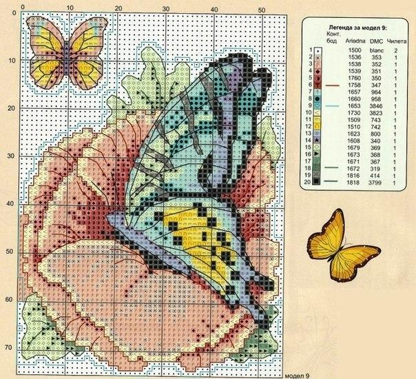 бабочки подборка2 (604x550, 425Kb)