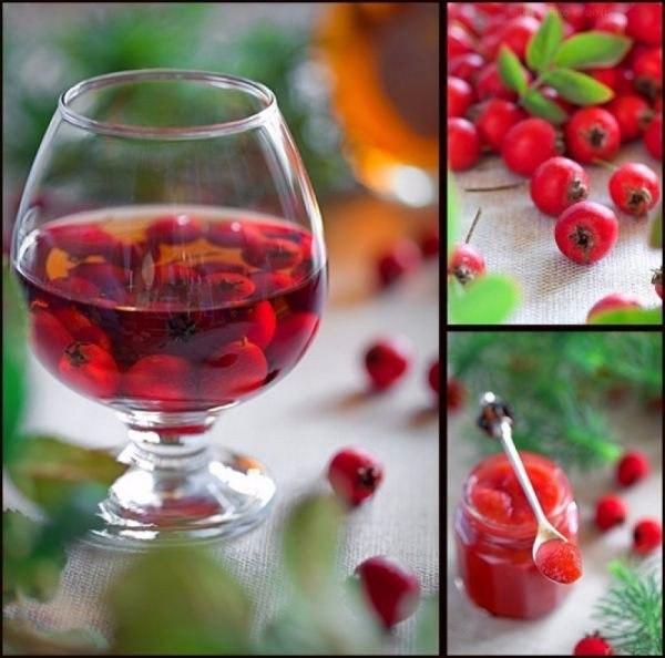 original (600x594, http://womenjournal.mirtesen.ru/blog/43040551725/Nastoyka-dlya-vashego-serdtsa-i-nervov)