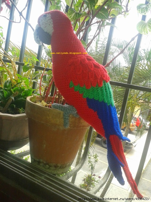 попугай1 (525x700, 264Kb)