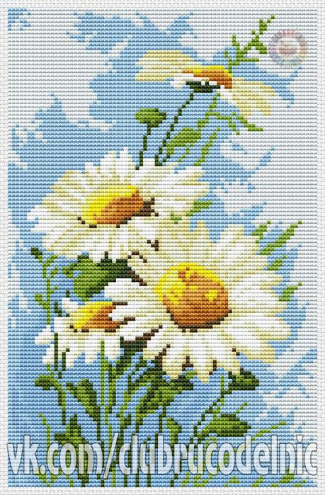 Daisies (459x700, 555Kb)