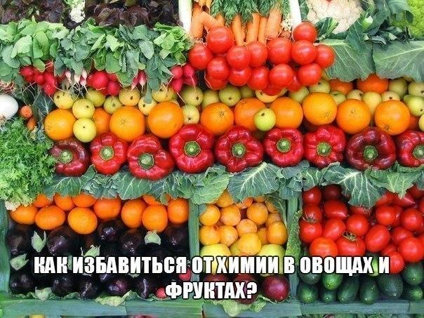 3937385_8qzYyqqnN28 (604x453, 99Kb)