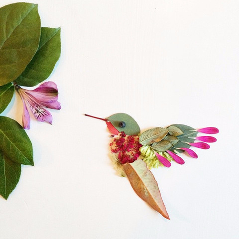 hummingbird_large (480x480, 131Kb)