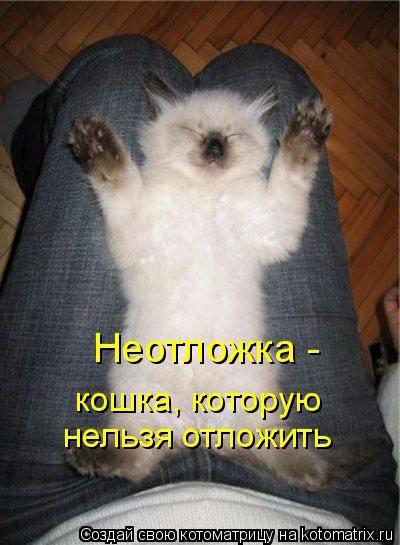 1429216127_18 (400x545, 195Kb)