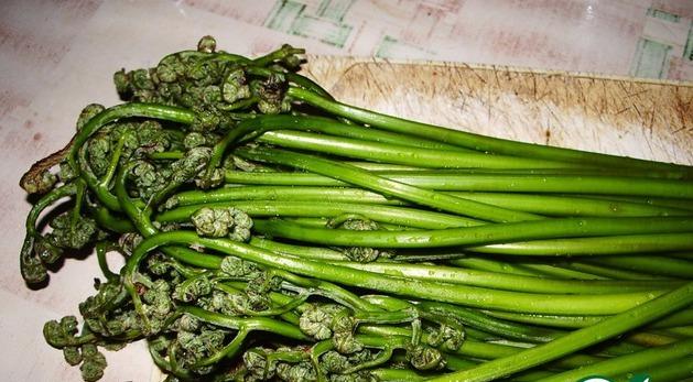Салат из свежего папоротника рецепт с