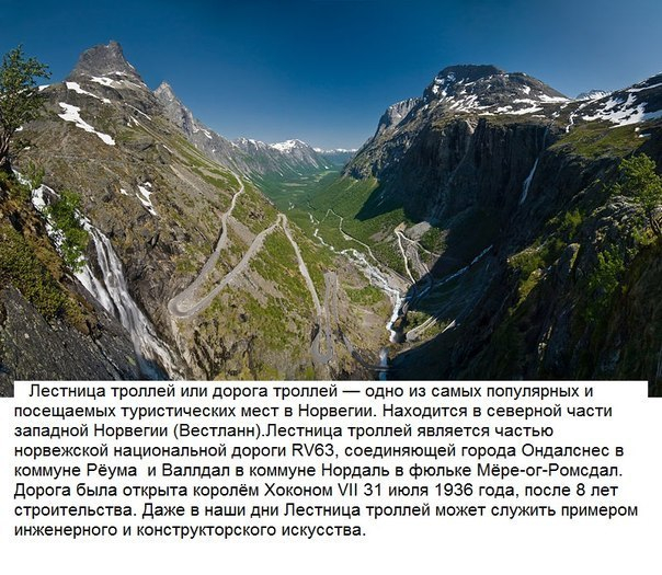 bfliuvo_FCI (604x525, 352Kb)