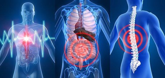 Наш организм и его сигналы (570x270, 35Kb)