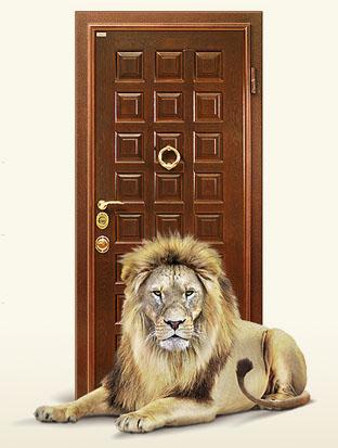 двери защита (312x413, 95Kb)