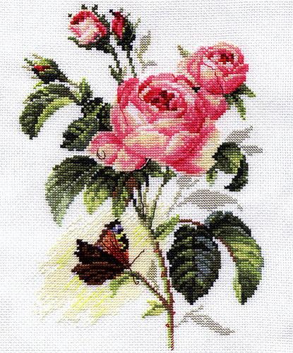 Квіти і рослини | записи в рубрике