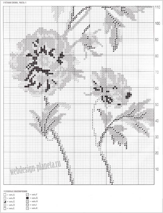kak-svyazat-spitsami-kardigan-s-tsvetochnym-zhakkardovym-uzorom-zhakkard-1 (535x700, 262Kb)