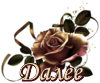 5230261_dalee_cher_roza (100x83, 16Kb)