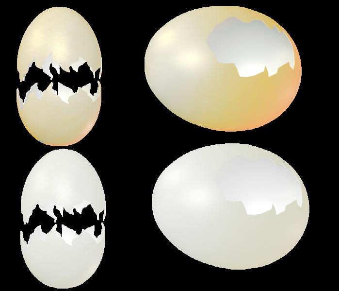 egg_shells_png_by_mysticmorning-d3bk4yv (700x599, 204Kb)