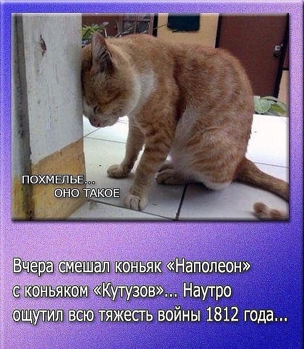 http://img1.liveinternet.ru/images/attach/c/3/122/333/122333397_01.jpg