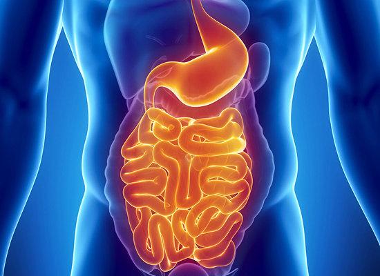 Дисбактериоз кишечника (550x400, 60Kb)