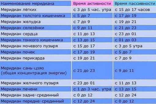 Суточная активность внутренних органов человека (510x340, 61Kb)