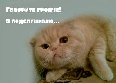 http://img1.liveinternet.ru/images/attach/c/3/122/63/122063179_Sp_JBQI6tIA.jpg