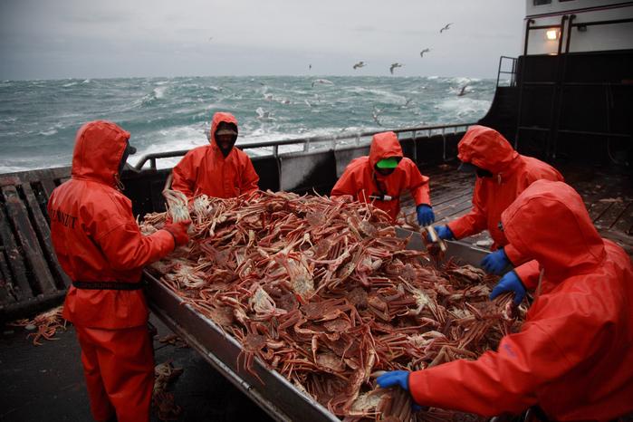 обработка оружия за рыбалку