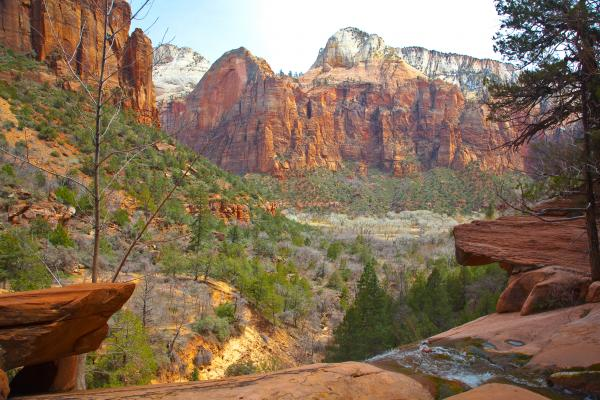 emerald-pools-zion-national-park-craig-ellenwood (600x400, 58Kb)