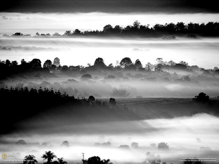 national geographic фотографии 15