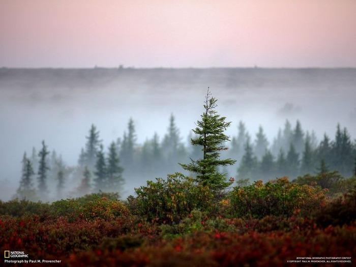 national geographic фотографии 70