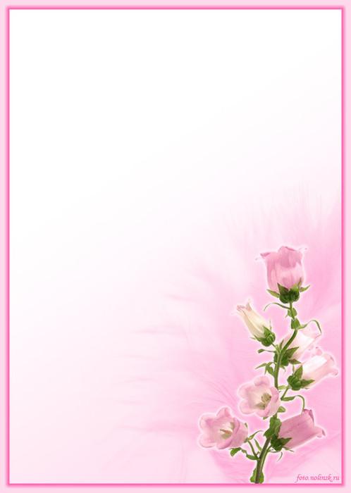 Фон на поздравительную открытку