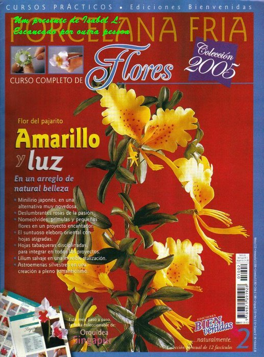 bienvenidas porcelana fria 2005 n 2 (flores) (517x700, 112Kb)
