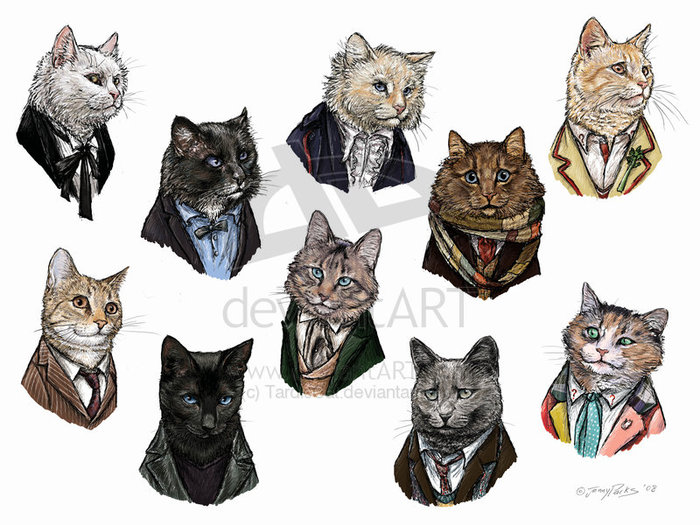Doctor_Who____cats__by_TardisCat (700x525, 101Kb)