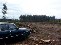 3983111_wood (259x194, 7Kb)