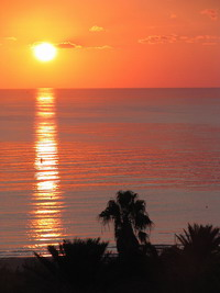 фото туниса (200x267, 18Kb)