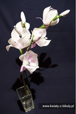 Цветы из гофрированной бумаги. Как сделать магнолию.
