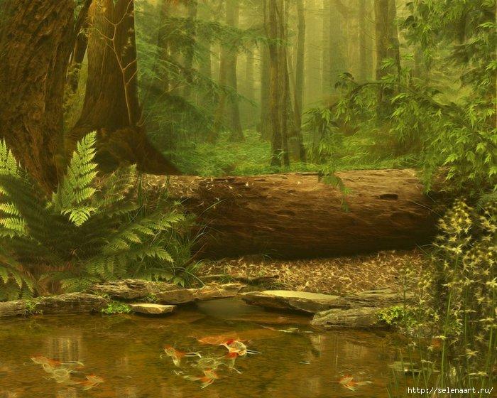 SelenaART/4278666_wood_pond_by_selenaartd34lcuf (700x560, 243Kb)