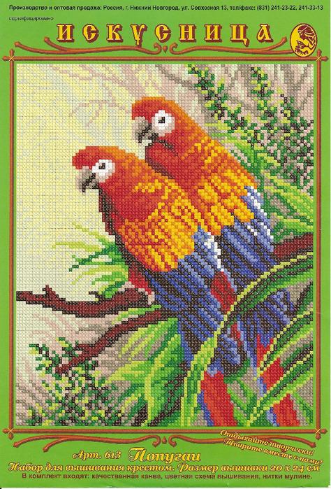 613 Попугаи (474x700, 258Kb)
