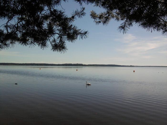 Фото0038 (700x525, 102Kb)