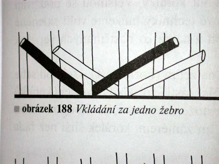 jezek-popis_010 (700x525, 95Kb)