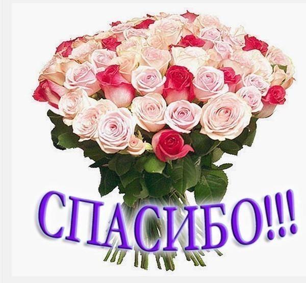 http://img1.liveinternet.ru/images/attach/c/3/75/133/75133449__1_1.JPG