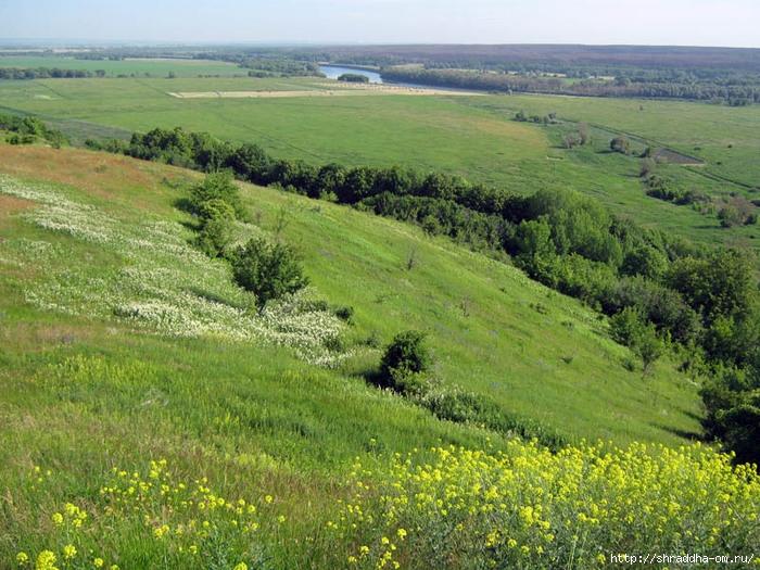 Воронежская область, Костенки, июнь 2011, Shraddha, 2 (700x525, 347Kb)