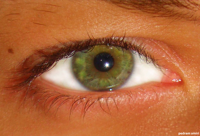 3518263_Green_Eye (700x478, 114Kb)