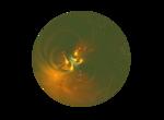 ������ 6 (700x514, 218Kb)