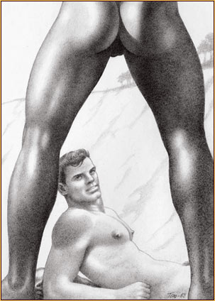 1242743_Tom_of_Finland_22 (303x424, 29Kb)